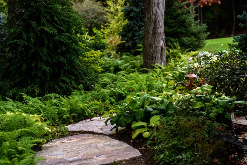 Low Maintenance Landscaping - Terrapin Landscapes
